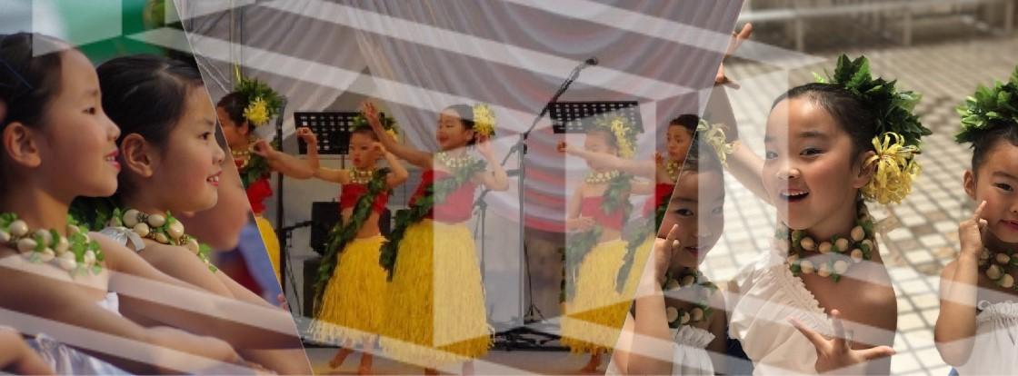 ʻOli ʻOli -hawaiian hula studio-